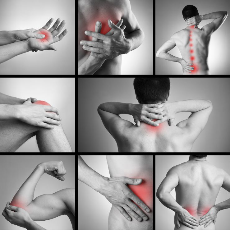 Examples of pain areas in the musculoskeletal system